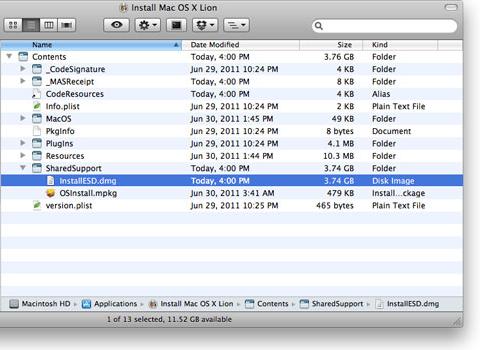 Lion installer 3a