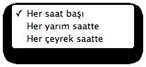 Sihirli elma aylin turkce lion 4