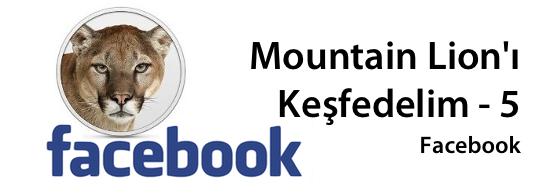 Mountain lion facebook banner