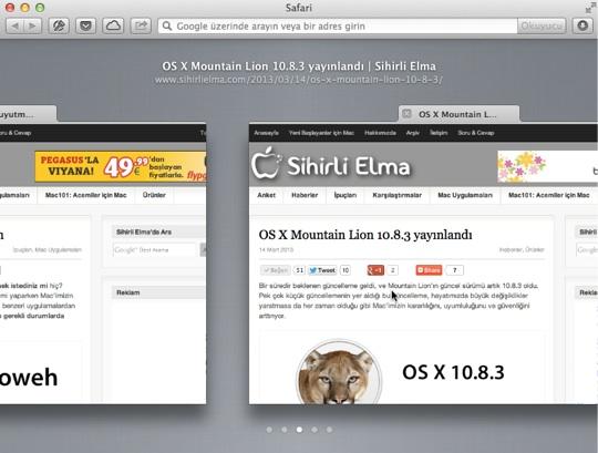 Sihirli elma mountain lion 7 pratik ipucu 9 sekme