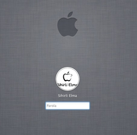 Sihirli elma ikinci el mac almak 4
