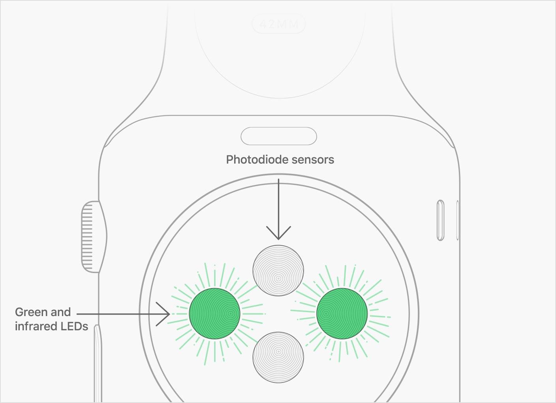 Apple Watch Kalp Sensörü